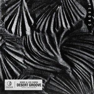 Desert Groove (Original Mix)
